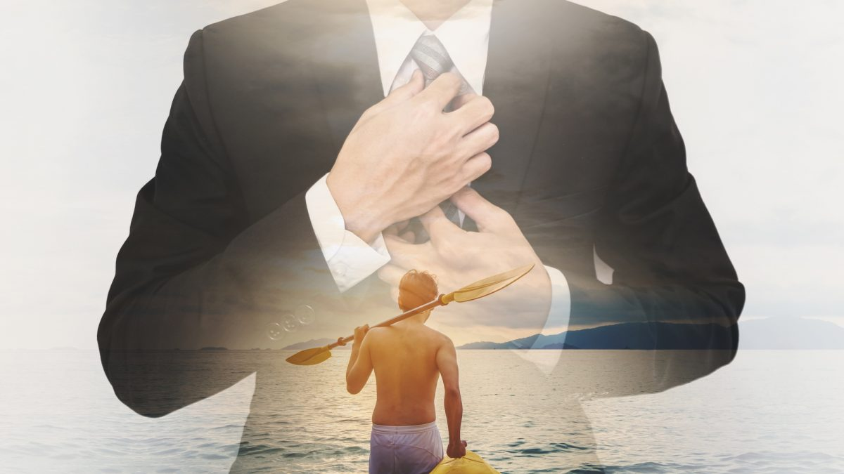 Unternehmen, Führung, Wildwasser-Strategie, Herbert Schreib
