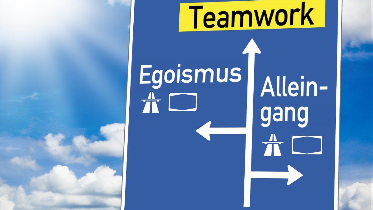 Herbert Schreib, Team, Blog, Teamwork, Egoismus, Egozombies, Teamplayer, Unternehmen, Change, Wildwasser-Strategie