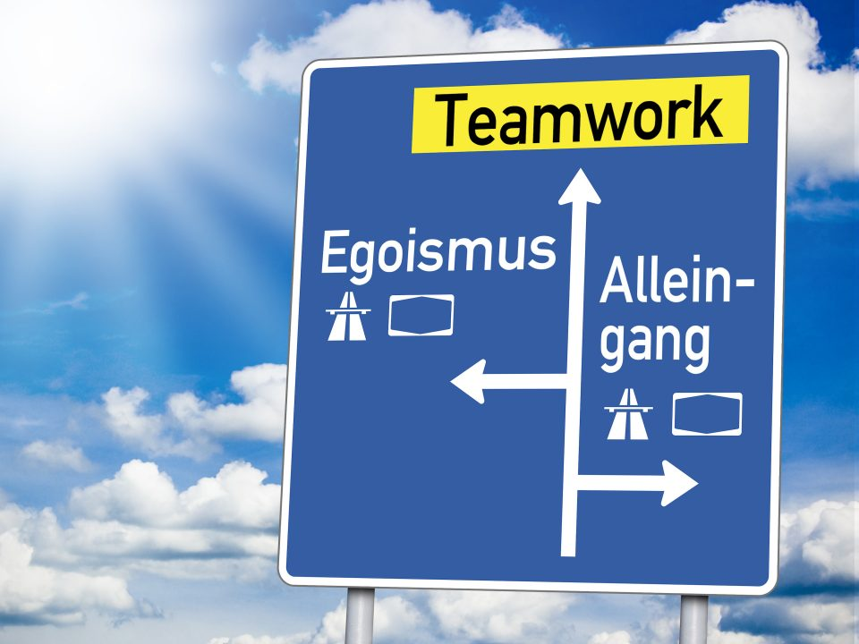 Herbert Schreib, Team, Blog, Teamwork, Egoismus, Egozombies, Teamplayer, Unternehmen, Change, Wildwasser-Strategie