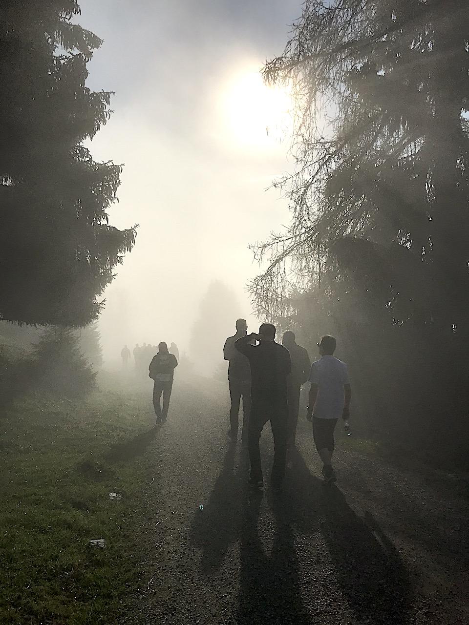 Morgenwanderung Nebel
